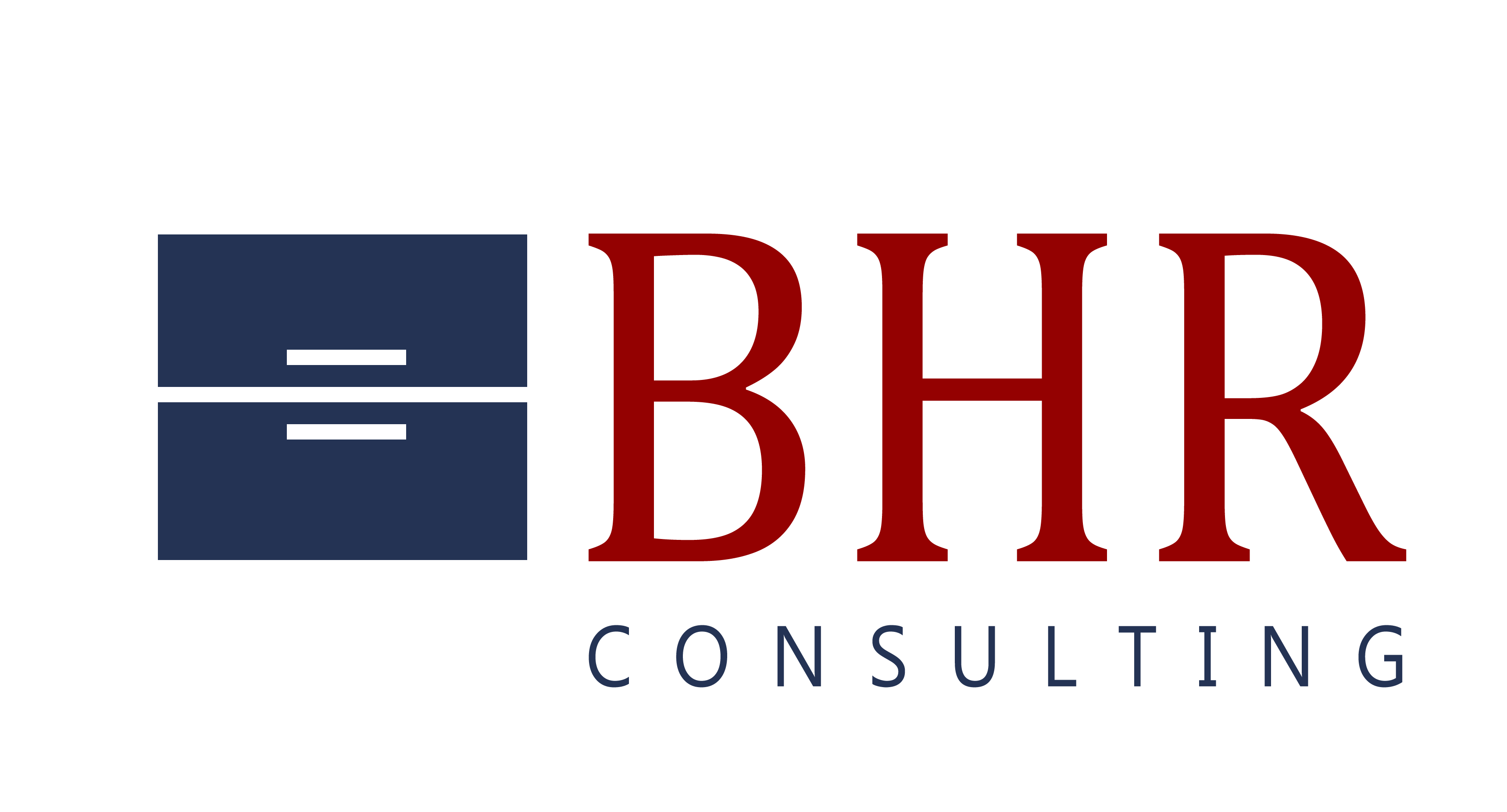 BHR Business Human Resources (BHR) Iasi